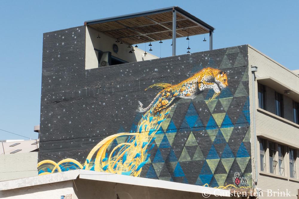 A springing leopard